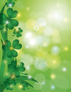 Shamrock Leaves with Bokeh Background Illustration Stock Photos