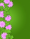 Shamrock Paper Cutting Clover Flowers Border Stock Photo