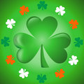Shamrock - Three leaves cloves Royalty Free Stock Photography
