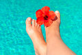 Shapely female legs with red flower on the edge of the pool Royalty Free Stock Images