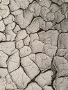 Dry cracked earth - drought Royalty Free Stock Photo