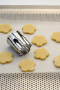 Shaping shortbread cookies with a biscuit cutter Royalty Free Stock Photo