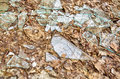 Shards of glass Royalty Free Stock Photo