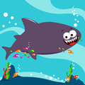 Shark and cleaner fish a swimming happily with the Stock Photography