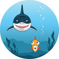Shark hunting for small fish illustration of angry scared trying to escape Royalty Free Stock Photography