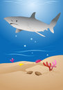 Shark illustration of a cartoon grey reef on sea background Stock Photography