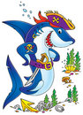 Shark Pirate Stock Images