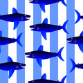 Shark seamless pattern. Royalty Free Stock Photo