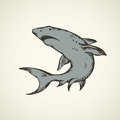 Shark. Vector drawing Royalty Free Stock Photo
