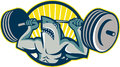 Shark weightlifter lifting barbell mascot illustration of a weights viewed from front set inside circle done in retro style Royalty Free Stock Image