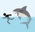 Shark zone Royalty Free Stock Photo