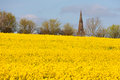 Sharnbrook church spire in bedfordshire england the of great britain with oil seed rape field foreground Royalty Free Stock Photo