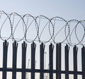 Sharp barbed wire spiral Stock Image