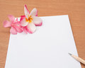 Sharp pencil on blank paper with pink flower concept for writing a love letter selective focus sharpness Royalty Free Stock Photography