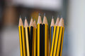 Sharp pencils ready for use by writer Stock Images