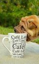 Sharpei puppy loves coffee Royalty Free Stock Images