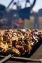 Shashlik on Grill Royalty Free Stock Photo