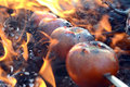 Shashlik of tomato on fire Stock Photography