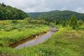 Shavers fork of the cheat river at the former townsite of spruce west virginia Stock Photos