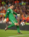 Shay Given Royalty Free Stock Photos