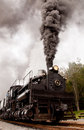 Shay number engine burns coal as it heads out of the station at cass scenic railroad state park in cass west virginia Stock Images