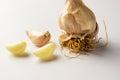 A sheaf of garlic Royalty Free Stock Photo