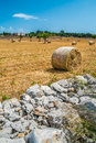 Sheaves of straw apulia region corn in the countryside south italy Royalty Free Stock Photography