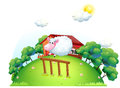 A sheep at the barnyard illustration of on white background Stock Images