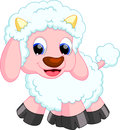 Sheep cartoon Stock Images
