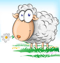 Sheep cartoon Royalty Free Stock Photo