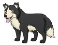 Sheep dog an illustration of a cartoon Royalty Free Stock Image