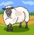 Sheep farm animal cartoon illustration of funny comic Stock Photo