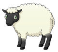 Sheep illustration of a cartoon Royalty Free Stock Photos