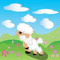 Sheep, lamb, Toon, flowers, sky, meadow, Royalty Free Stock Images