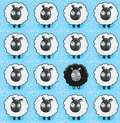 Sheep Pattern Stock Images