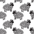 Sheep pattern vector background curly fluffy on the field Royalty Free Stock Photo