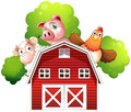 A sheep a pig and a chicken hiding at the back of a barn illustration on white background Stock Photos