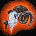 Sheep`s skull, the figure with acrylic paints. illustration with acrylic paints