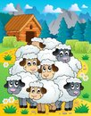 Sheep theme image eps vector illustration Stock Photos