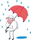 Sheep under red umbrella in a rain. Royalty Free Stock Photography