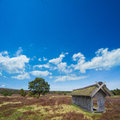 Sheepfold ihn the lueneburg heath ancient with thatched roof in Stock Images