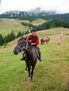 Sheepman a riding a horse from romania Stock Images