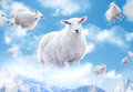 Sheeps in clouds cute flying cloouds Stock Photography