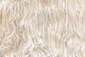 Sheepskin texture background Stock Photos