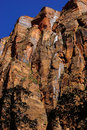 Sheer cliffs confine the virgin river on forested riverside walk in zion national park utah Stock Photos
