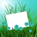 Sheet with flowers on blue nature background Stock Photo