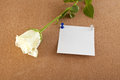 Sheet of paper and flower on a table Royalty Free Stock Image
