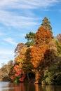 Sheffield Park Garden in autumn Royalty Free Stock Photo