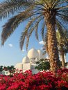 Sheikh zayed mosque en abu dhabi Photographie stock