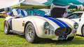 1966 Shelby Cobra Royalty Free Stock Photo